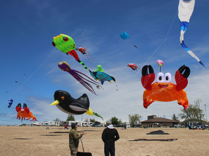 Giant show kites at the Great Lakes Kite Festival