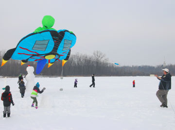 Darryl Waters unveiled his new Alien kite for us at the 2015 Reeds Lake Ice Fly